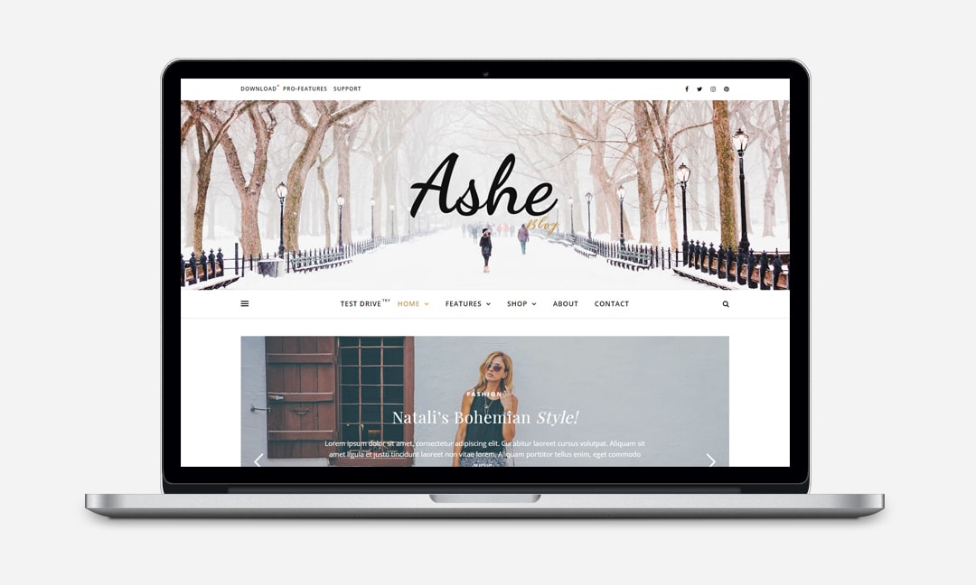 The Ashe them provides you with a professional modern design for your website.